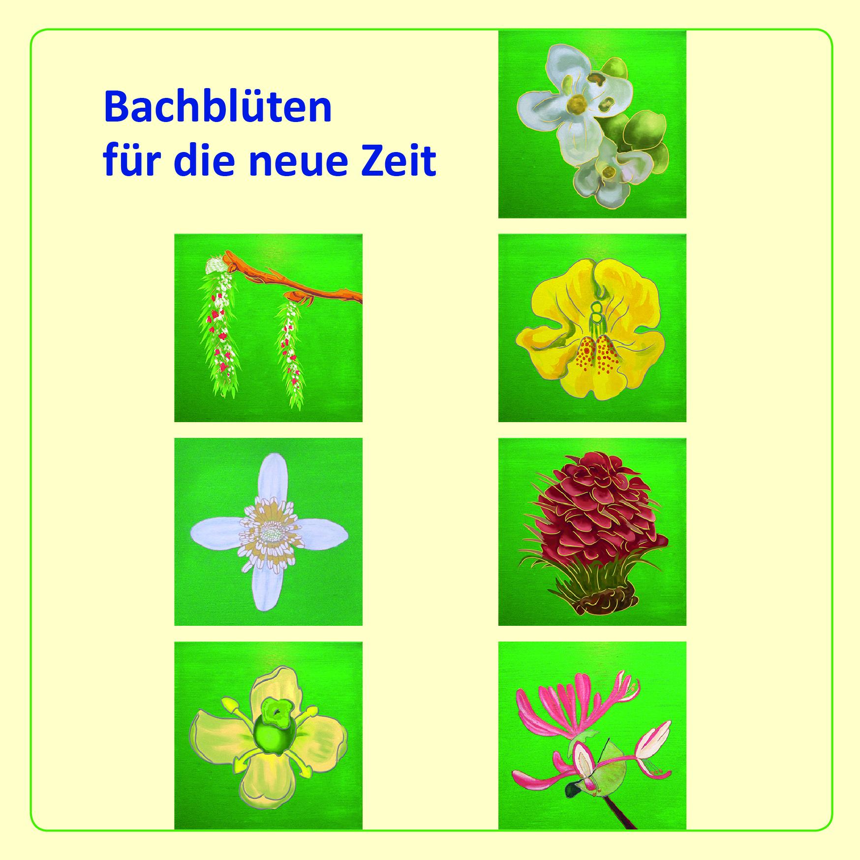 Flyer zur Bachblütenserie